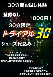 トライアル30
